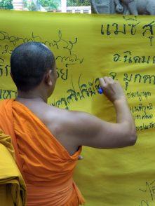 Thai monk at Mahabodhi Temple